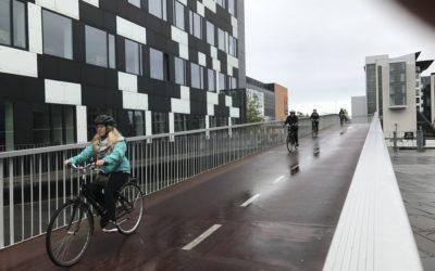 Sightseeing tours in Copenhagen